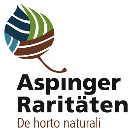 Aspinger Logo